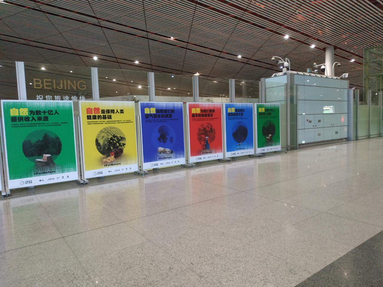 Beijing airport display